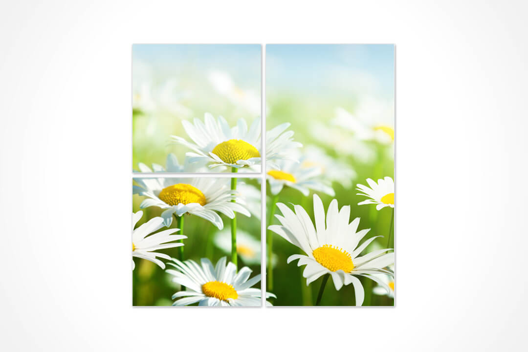 3 Parça Karma - Çiçekler 16