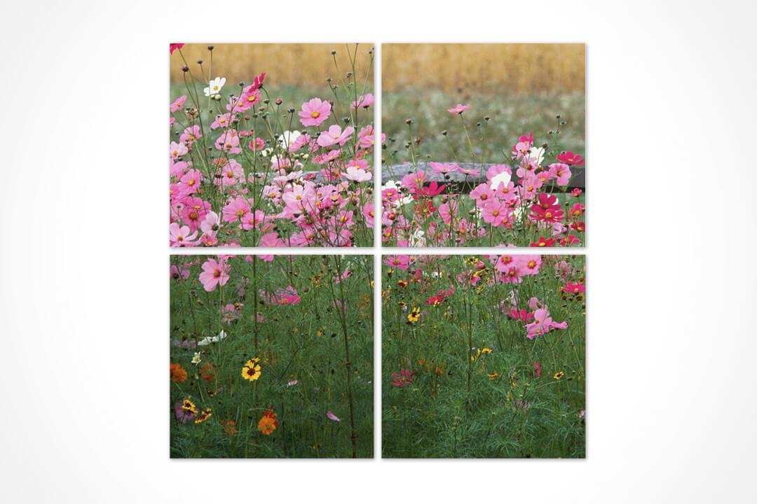 4 Parça Kare - Çiçekler 01