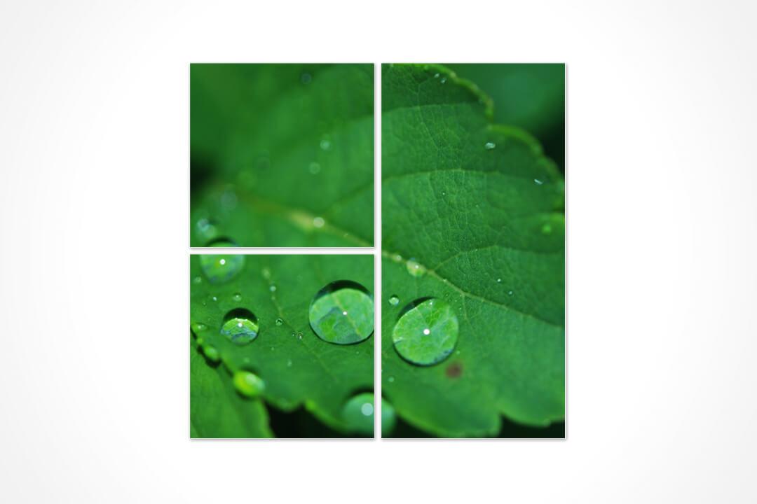 3 Parça Karma - Doğa 17