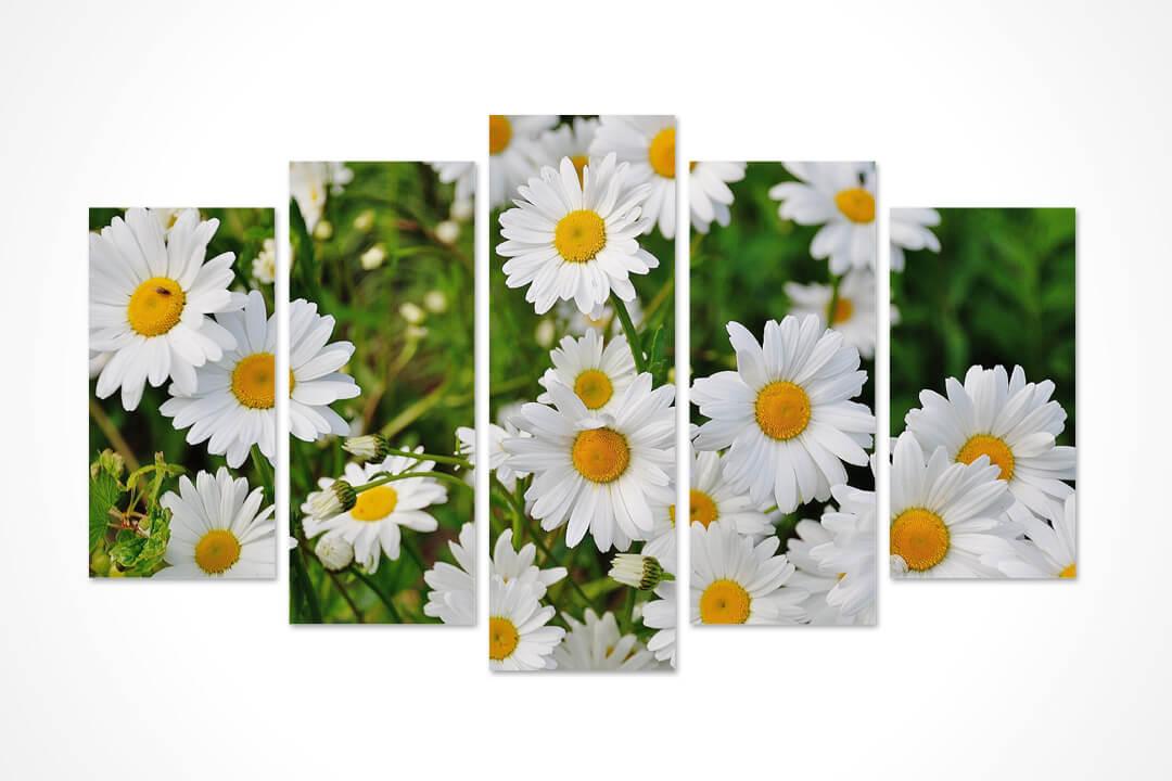 5 Parça Oval - Çiçekler 03