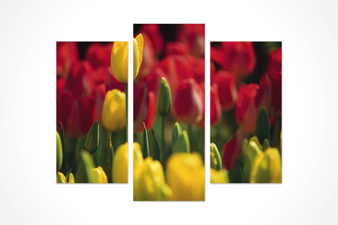 3 Parça Oval - Çiçekler 02